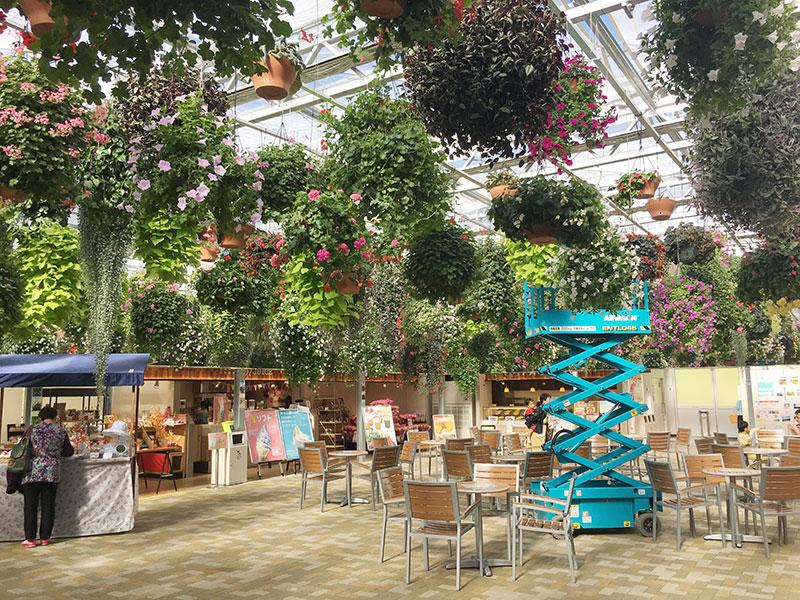 スカイガーデン内の天井いっぱいの花