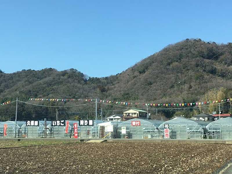 久保田いちご狩り園の外観